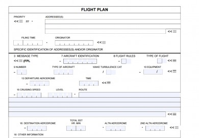 ICAO Flight Plan